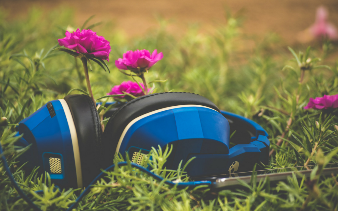 Music and Plant Growth
